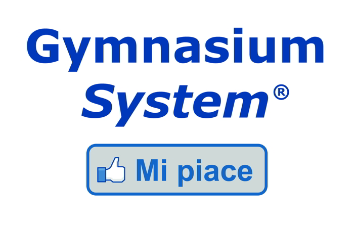 SOFTWARE GESTIONALE GYMNASIUM SYSTEM 2013